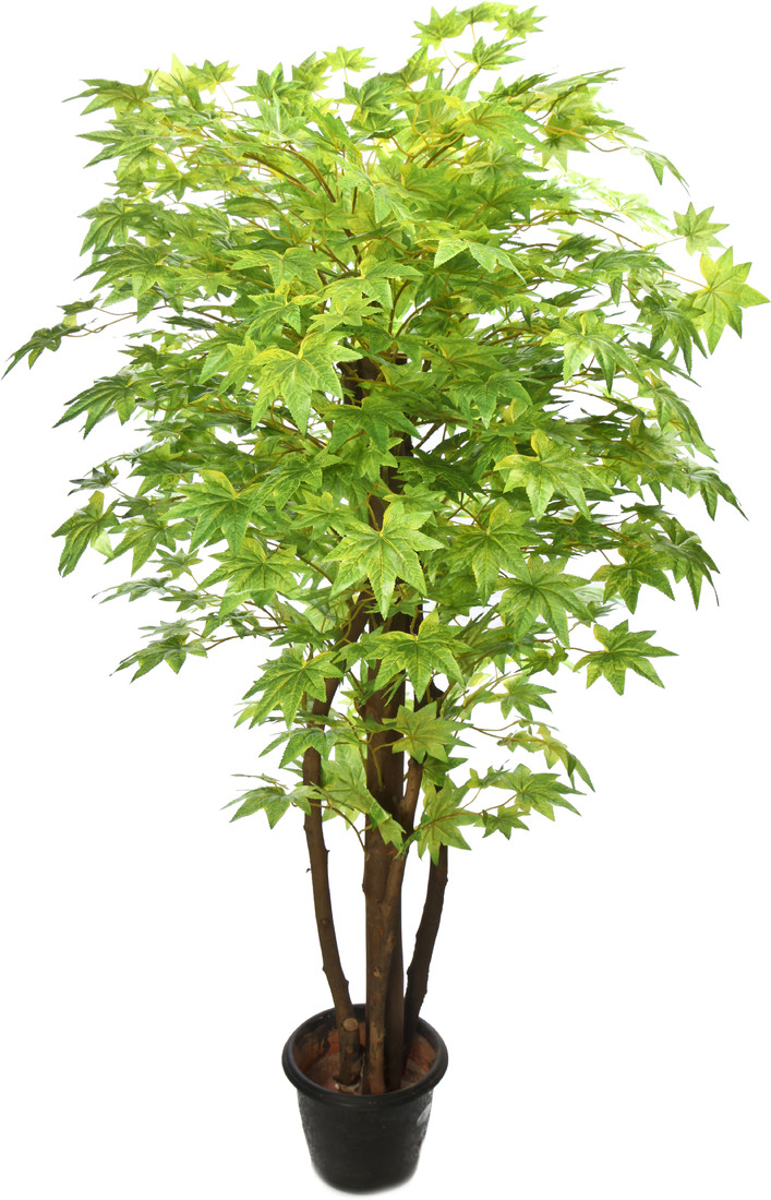 Kusal 2 green maple Wild Plant Artificial Plant