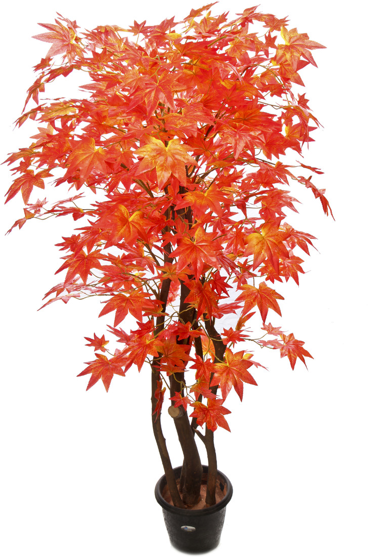 Kusal 2 red maple Wild Plant Artificial Plant